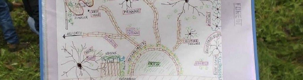 Food Forest e Permacultura